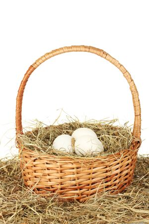white eggs in a wicker basket on hay on white background close-up Stock Photo - 13878556