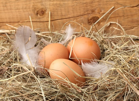a straw: chicken eggs in a nest on wooden background