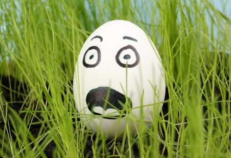 egg box: White egg with funny face in green grass