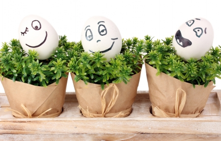 dodger: White eggs with funny faces on green bushes