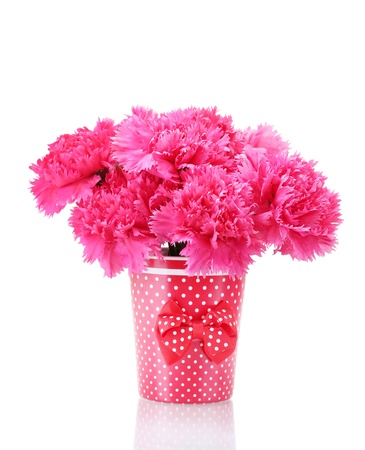 Bouquet of carnations in a vase isolated on white Stock Photo - 13941208