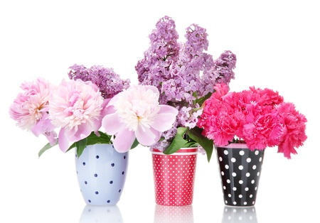 beautiful spring flowers in cups isolated on white Stock Photo - 13943016