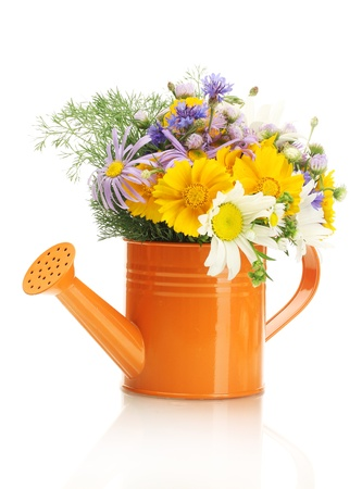 beautiful bouquet of bright  wildflowers in watering can, isolated on white Stock Photo - 13941164