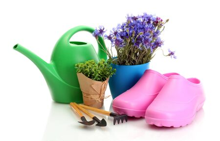 watering can, galoshes, tools and plants in flowerpot isolated on white photo