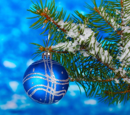 Christmas ball on the tree on blue photo