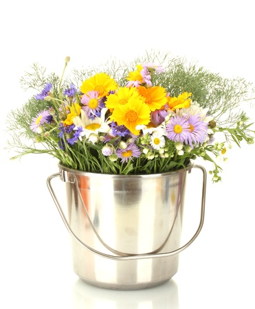 beautiful bouquet of bright  wildflowers in bucket, isolated on white Stock Photo - 14064466