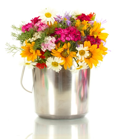 beautiful bouquet of bright  wildflowers in bucket, isolated on white Stock Photo - 14064472