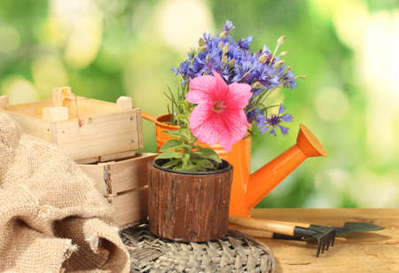 watering can, tools and flowers on wooden table on green background photo
