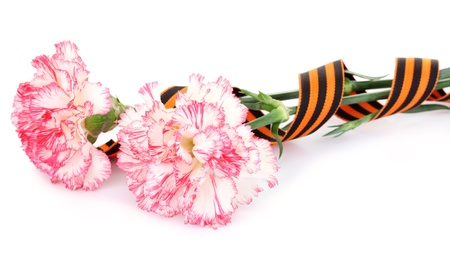 carnations and St. George's ribbon isolated on white Stock Photo - 14077417