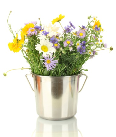 beautiful bouquet of bright  wildflowers in bucket, isolated on white Stock Photo - 14092135