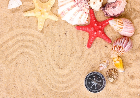 Seashells and starfishes with kompass on sand photo