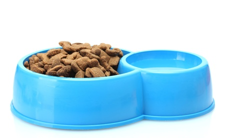 dry dog food and water in blue bowl isolated on white photo