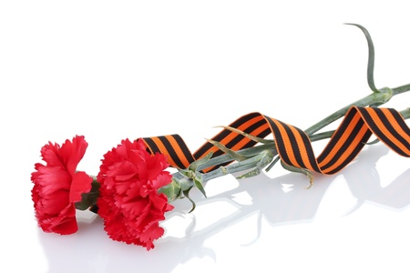 carnations and St. George's ribbon isolated on white Stock Photo - 14098221
