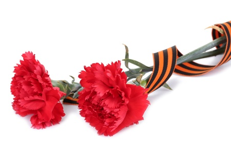 carnations and St. George's ribbon isolated on white photo