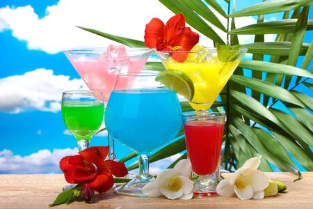 exotic cocktails and flowers on table on blue sky background Stock Photo - 14111317