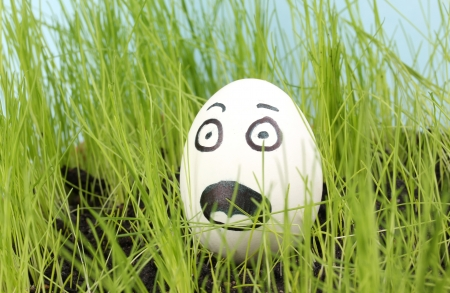 White egg with funny face in green grass photo