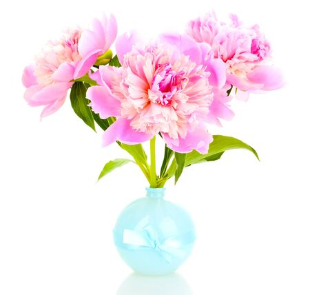 Three pink peonies in vase isolated on white photo