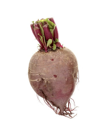 Young red beet isolated on white photo