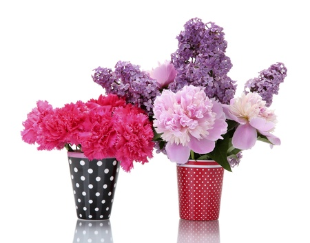 beautiful spring flowers in cups isolated on white Stock Photo - 14224828