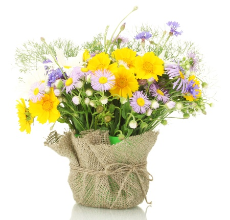 flor silvestre: hermoso ramo de flores silvestres vivos en maceta, aislado en blanco