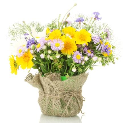 wild flowers: mooi boeket van wilde bloemen in heldere bloempot, geïsoleerd op wit Stockfoto
