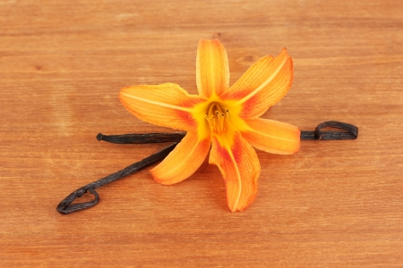 Vanilla pods with flower on wooden background photo