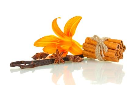flor de vainilla: Vainas de vainilla con especias aislados en blanco