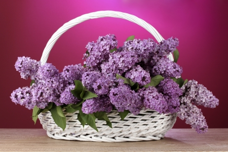 beautiful lilac flowers in basket on red background photo