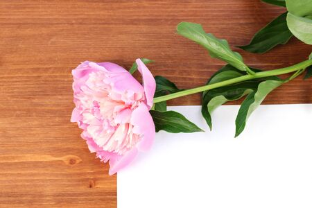 Pink peony with card on wooden background photo
