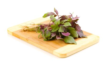Fresh basil on wooden board isolated on white Stock Photo - 14352401