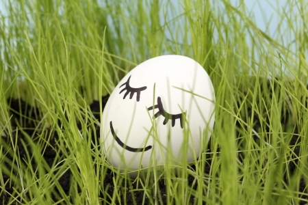 White egg with funny face in green grass Stock Photo - 14354456