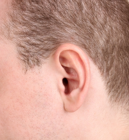 Human ear close-up isolated on white photo