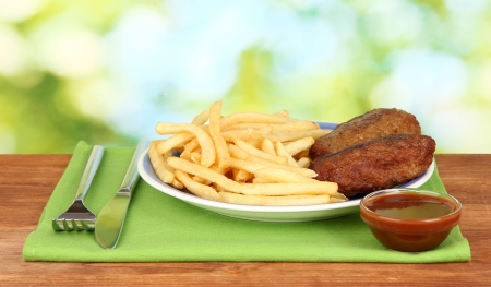 Potatoes fries with burgers on the plate on green background close-up Stock Photo - 14437081