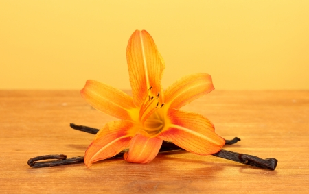 Vanilla pods with flower on yellow background photo