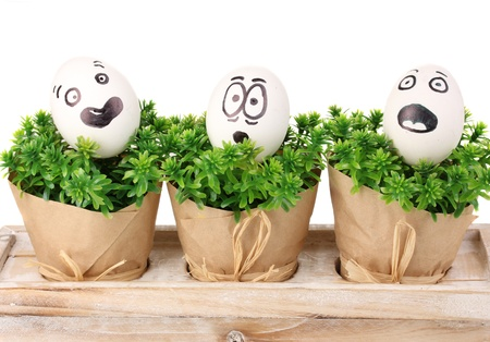 White eggs with funny faces on green bushes Stock Photo - 14469478