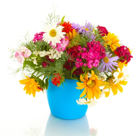 beautiful bouquet of bright  wildflowers in flowerpot, isolated on white photo