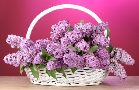 beautiful lilac flowers in basket on red background Stock Photo - 14503903