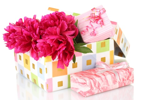 beautirul pink peonies in gift box isolated on white photo