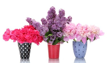 beautiful spring flowers in cups isolated on white photo