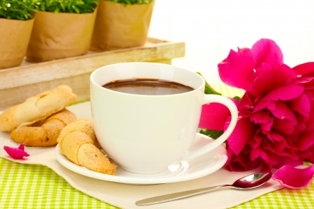 cup hot chocolate, cookies  and flower on table in cafe photo