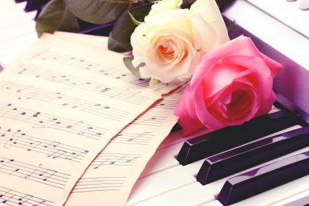 piano closeup: background of piano keyboard with roses Stock Photo