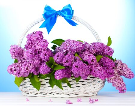 beautiful lilac flowers in basket on blue background Stock Photo - 14539826