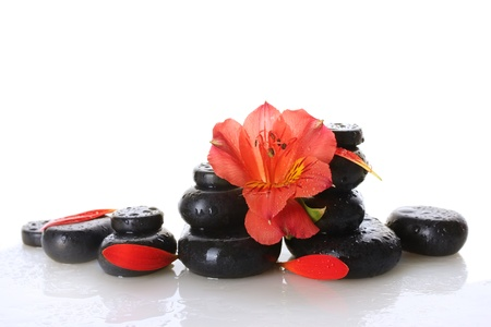 Spa stones with drops, red flower and petals isolated on white photo