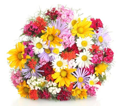 ramo flores: hermoso ramo de flores silvestres vivos, aislado en blanco Foto de archivo