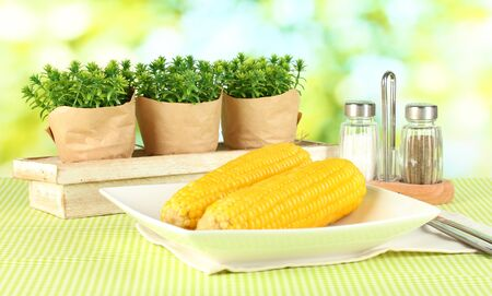 boiled corn and flowers on a background of nature photo