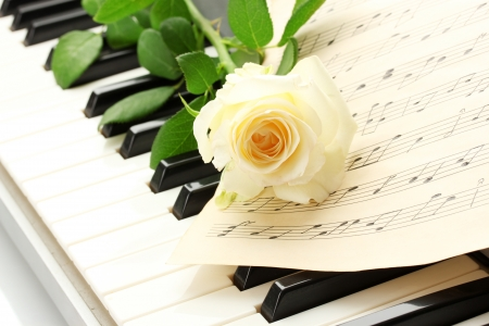 background of piano keyboard with rose Stock Photo - 14703355