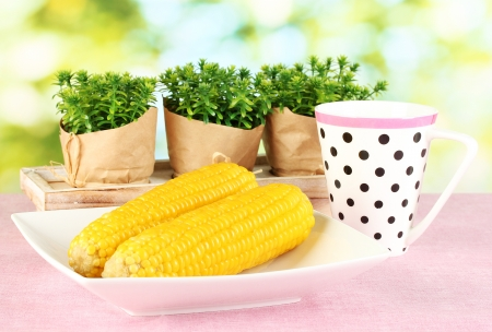 boiled corn on the pink table cloths on the background of nature photo