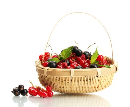 ripe berries with mint in basket isolated on white Stock Photo - 14691547