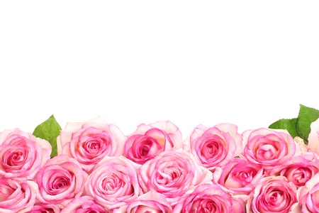 rose bud: beautiful bouquet of pink roses isolated on white