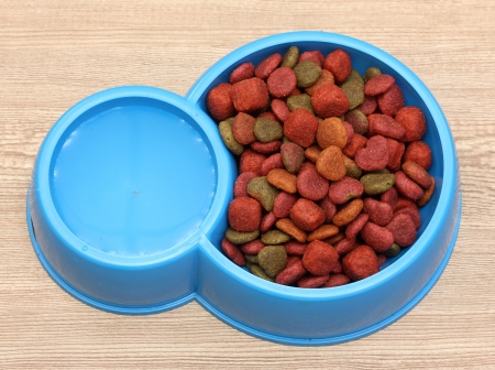 dry dog food and water in blue bowl on wooden background photo